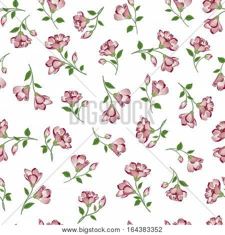 Floral  Pattern. Flower Seamless Background. Flourish Ornamental