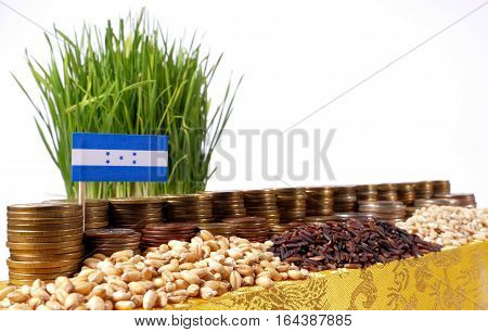 Honduras Flag Waving With Stack Of Money Coins And Piles Of Wheat And Rice Seeds
