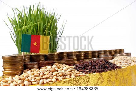 Cameroon Flag Waving With Stack Of Money Coins And Piles Of Wheat And Rice Seeds