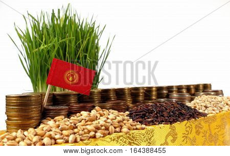 Kyrgyzstan Flag Waving With Stack Of Money Coins And Piles Of Wheat And Rice Seeds
