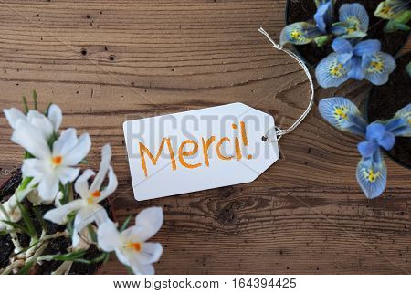 Label With French Text Merci Means Thank You. Spring Flowers Like Grape Hyacinth And Crocus. Aged Wooden Background