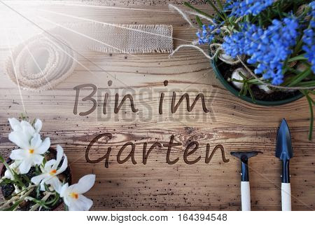 German Text Bin Im Garten Means I Am In The Garden. Sunny Spring Flowers Like Grape Hyacinth And Crocus. Gardening Tools Like Rake And Shovel. Hemp Fabric Ribbon. Aged Wooden Background