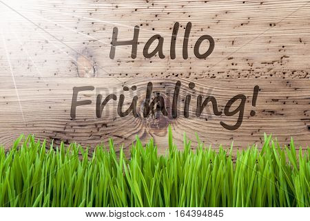 German Text Hallo Fruehling Means Hello Spring. Spring Season Greeting Card. Bright, Sunny And Aged Wooden Background With Gras.