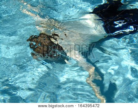 Man Swimming Under Water in a Swimming Pool
