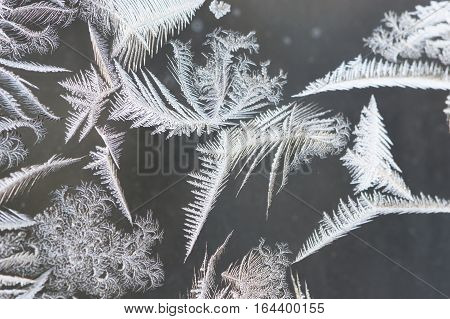 Close up of intricate white ice crystals on a window pane against a dark gray background. Pattern is leaf like. Photographed in natural light with shallow depth of field.