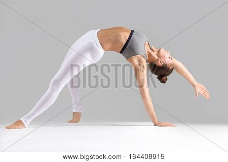 Young attractive woman practicing yoga, stretching in Wild Thing, Flip-the-Dog exercise, Camatkarasana pose, working out wearing sportswear, indoor full length, isolated against grey studio background