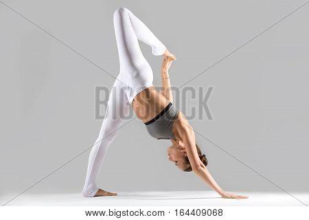 Young woman practicing yoga, doing variation of one legged downward facing dog exercise, eka pada adho mukha svanasana pose, working out wearing sportswear, indoor full length, grey studio background