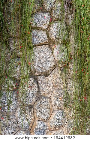 Stone facing retaining wall covered with plants