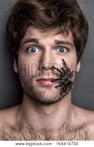 Portrait Of A Young Handsome Man With Spider On His Face