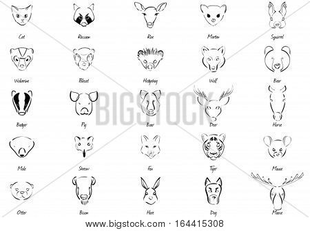 Black-white set of various animals and names