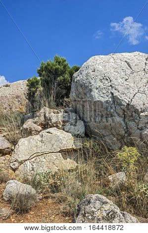 Russia Crimea. Rocks which snap into the sea near Balaklava. Hot Crimean sun-scorched grass rare green bushes juniper. Huge boulders miraculously hold on a slope.