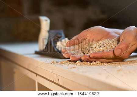 Hands holding sawdust on wooden background with plane