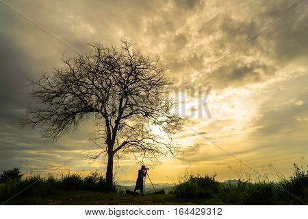 Silhouette of photographer taking picture of landscape with lonely tree during beautiful sunset.
