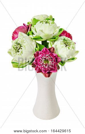 Bouquet of Pink Lotus in white vase isolated on white background Saved clipping path.