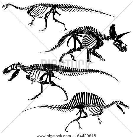 Ancient fossil dinosaur skeletons, lizard animals bones vector set. Skeleton disappeared dinosaur, black silhouette skeleton frame illustration