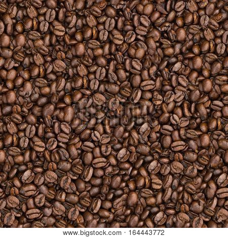texture of arabica coffee beans background.