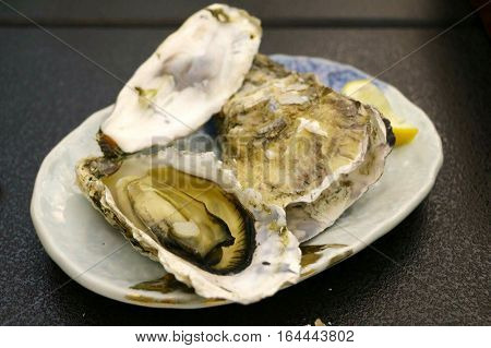 Exquisite delicacy: fresh large oysters are on the plate