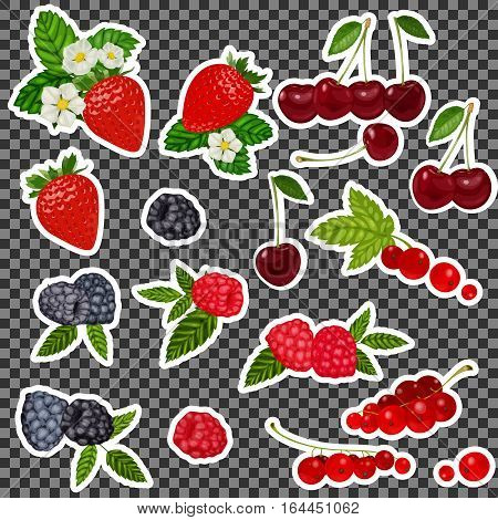 Strawberry, Blueberry, Cherry, Raspberry, Red Currant. Stickers, Patch Set Collection. Vector Artwor