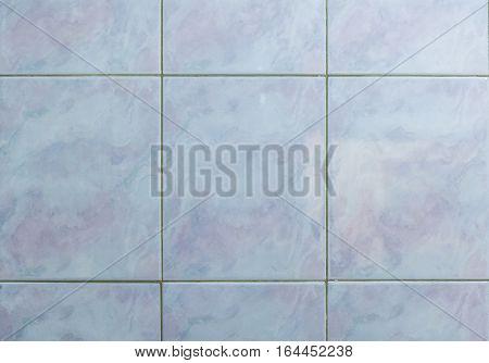 Interior Or Exterior Bathroom Or Kitchen Square Ceramic Tiles.