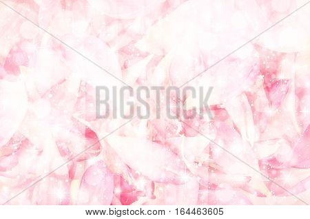 Summer blossoming moth lotus petal background toned light bokeh background pastel and soft card