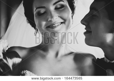 Fiance Kisses A Delicate Cheek Of A Daydreaming Bride