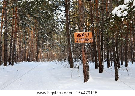 Ski track of health - sign in the winter pine forest. Novosibirsk oblast Siberia Russia