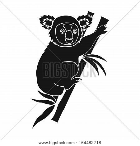 Australian koala icon in black design isolated on white background. Australia symbol stock vector illustration.