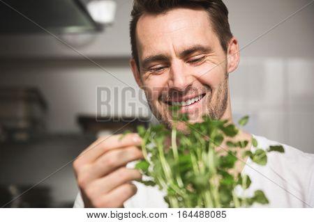 Fresh Herbs Best For Dinner
