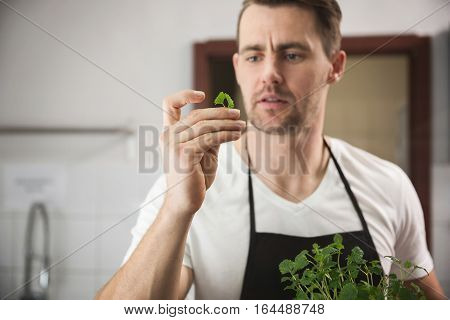 Chef Holding Small Piece Of Lemon