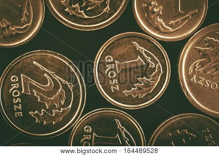 Polish Currency Coins. Polish Zloty Golden Grosze Coins Macro Photo.