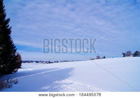 Cross country ski track in Nature in Czech Republic
