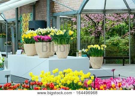Pavillion interior view with flowers in dutch spring garden