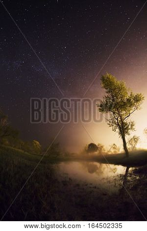 starry night the stars over the lake green grass trees illuminated by a flashlight the Milky Way fisheye photo mist over the lake magical atmosphere