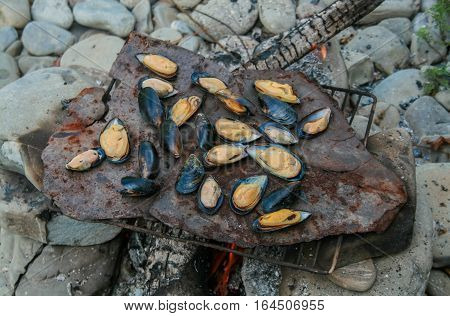 The process of preparing mussels on a fire in the wild natural environment
