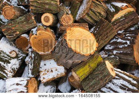 Pile Of Chopped Firewood Covered With Snow