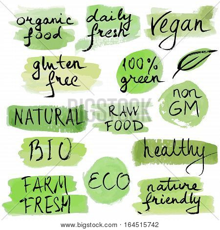 Set of vector illustration eco logos, labels, badges. Handwritten. Modern brush pen hand drawn ink lettering for ecology nature design farm market, vegan store, stickers, banners, cards, advertisement