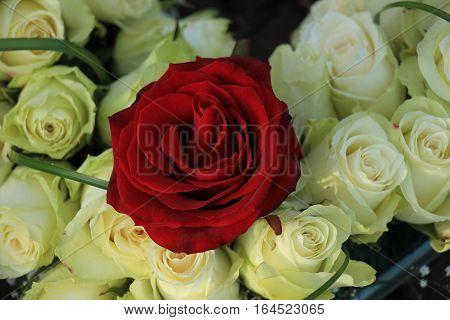 Red rose in a white wedding arrangement