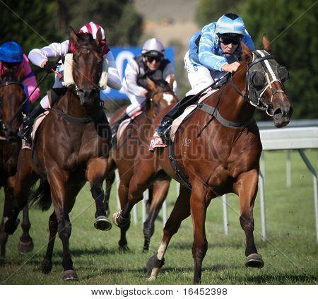 MELBOURNE - 21 de fevereiro: Cavalos no acabamento direto na placa dos benefícios das comunidades Ritchies