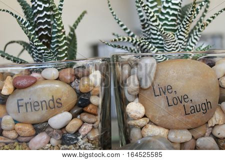 Cactus plants in stones with message on the big stones