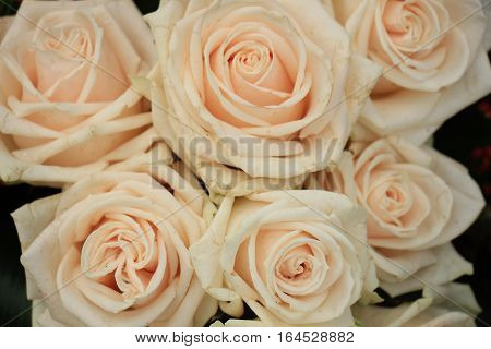 Pale pink roses in a floral arrangement at a wedding