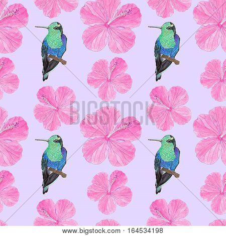 Hummingbird and hibiscus illustration. Seamless pattern with hand-drawn tropical flower and bird on the white background. Real watercolor drawing