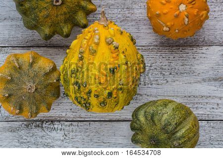 Different kind of pumpkins and winter squashes on white wooden background. Top view