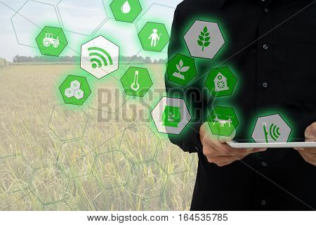 Internet of things(agriculture concept)smart farmingindustrial agriculture.Farmer hold the tablet and to use augmented reality technology to control monitor and management in the field