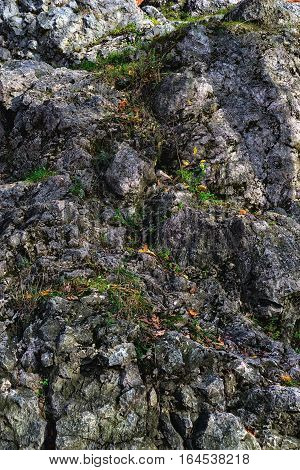 texture of the rocks and mountain vegetation in summer day