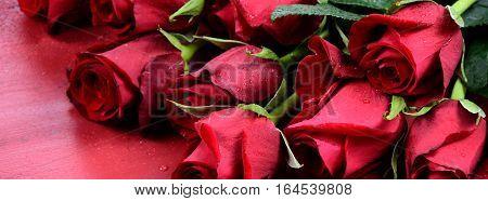 Valentine Roses Social Media Banner