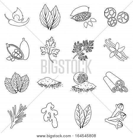 Herb and spices set icons in outline style. Big collection herb and spices vector symbol stock