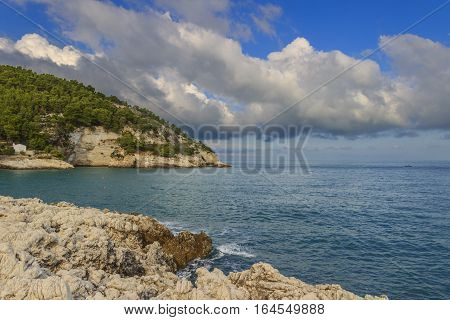 Apula coast,Gargano National Park: Pungnochiuso Bay. Vieste,Italy.The bay is bounded by marvellous hills covered with age-old pine trees.
