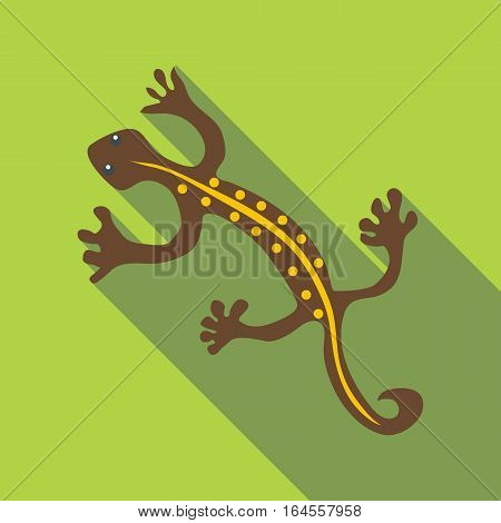 Brown lizard icon. Flat illustration of brown lizard vector icon for web