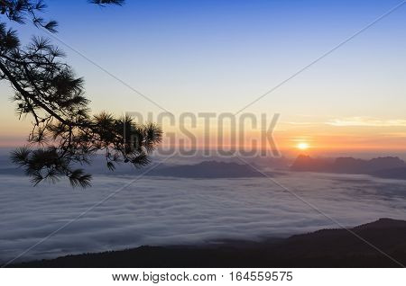 The morning sunrise scene with the fog at Phukradung nation park