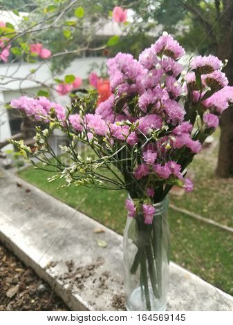 purple tiny flower in the glass of vase